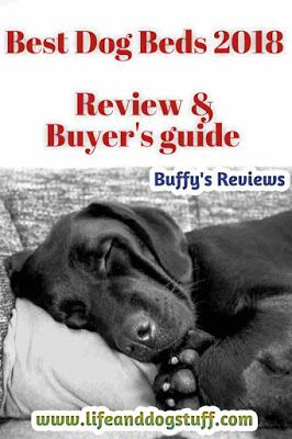 Best Dog Beds 2018 - Reviews and Buyer's guide!  #dogs #reviews dog bed | dog bed ideas | dog beds for large dogs | dog beds for chewers | dog beds for small dogs | dog beds for puppies | orthopedic memory foam.