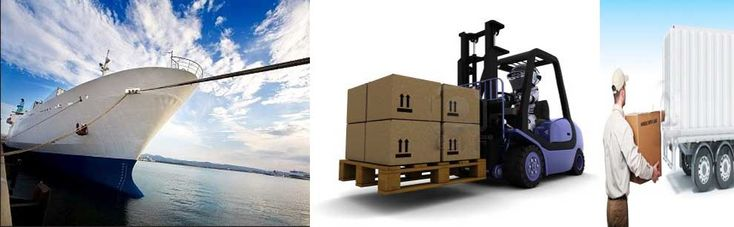 international/domestic courier services