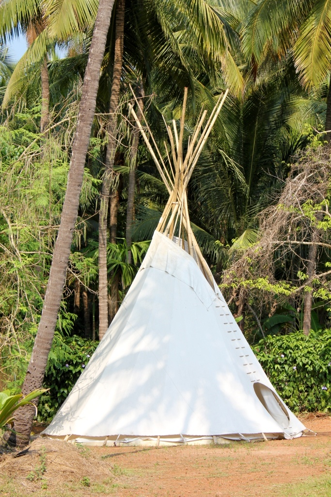 www.lamangrovegoa.com