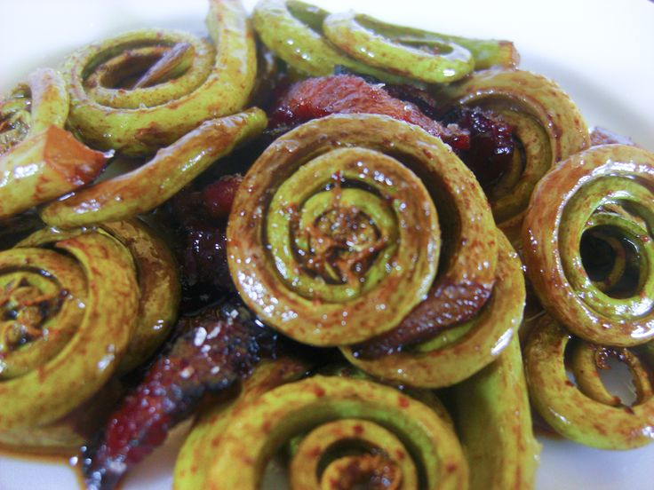 """Fiddleheads sauteed with bacon and balsamic - Fiddleheads, named because they look like the coiled end of a violin (""""fiddle""""), are the tasty new sprouts of woodland ferns, picked before they develop into large lacy fronds. They are a fragile spring specialty, usually available for just a few weeks in the spring. Grocery stores in Canada may stock frozen fiddleheads alongside other frozen vegetables."""