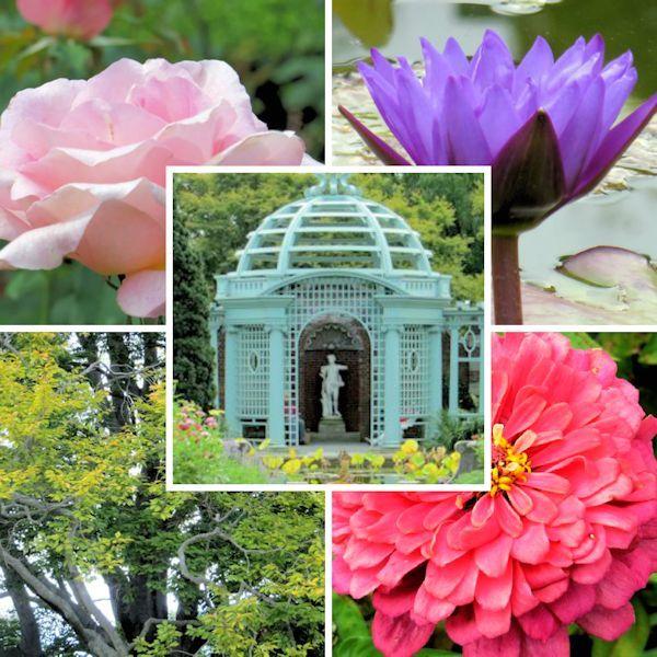 Old Westbury Gardens Long Island: 22 Best Images About Botanical & Community Gardens On