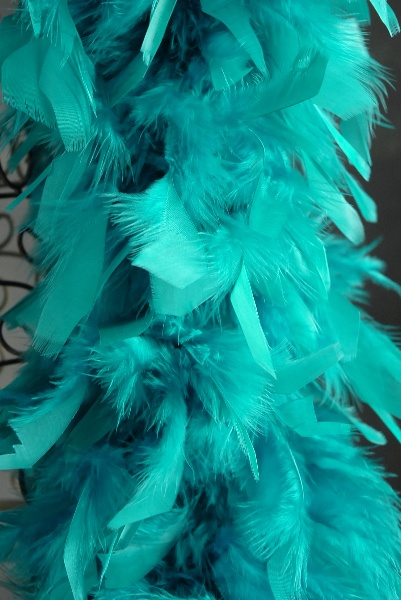 The teal ostrich feathers are probably too pricey for the occasion, but this might work. But the teal ostrich feathers could also work for Patty's 30th, so...