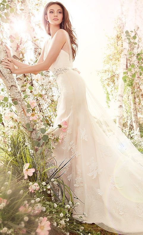 Jim Hjelm Wedding Dress  This pic is very mystical and majestic