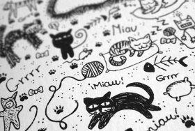 libreta de gatos