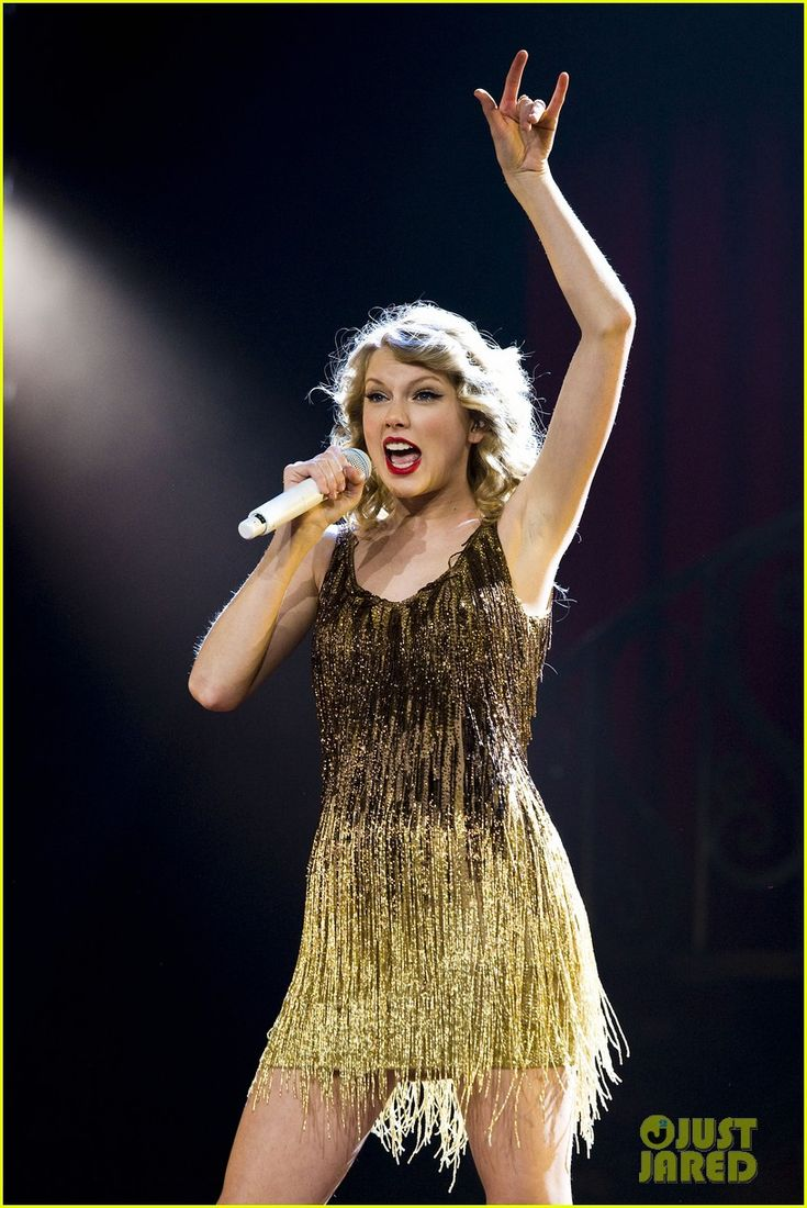 Taylor Swift: Madison Square Garden Concert!