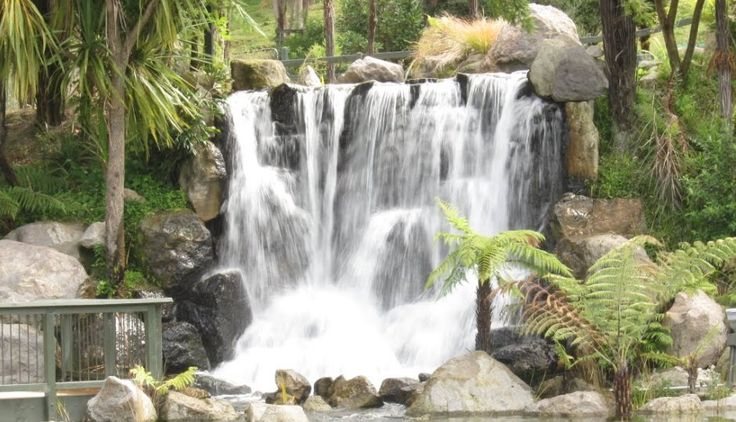 Rainbow Springs   Sudima Hotels