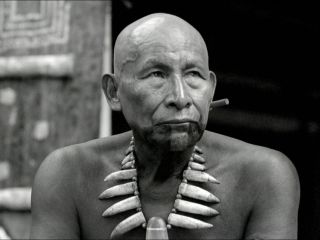 Embrace Of The Serpent (El Abrazo De La Serpiente) (2016) - Rotten Tomatoes