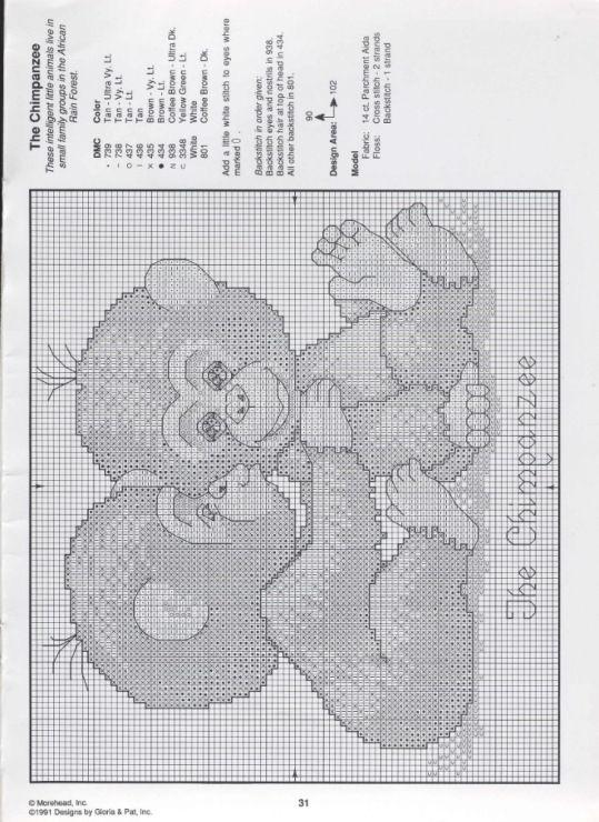 Chimpansee, baby, cute