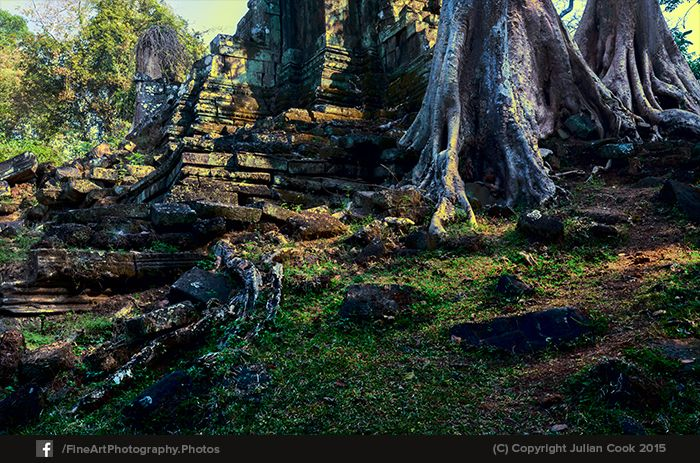 Trees overgrowing the #ruins. This is Tomb Raider territory!