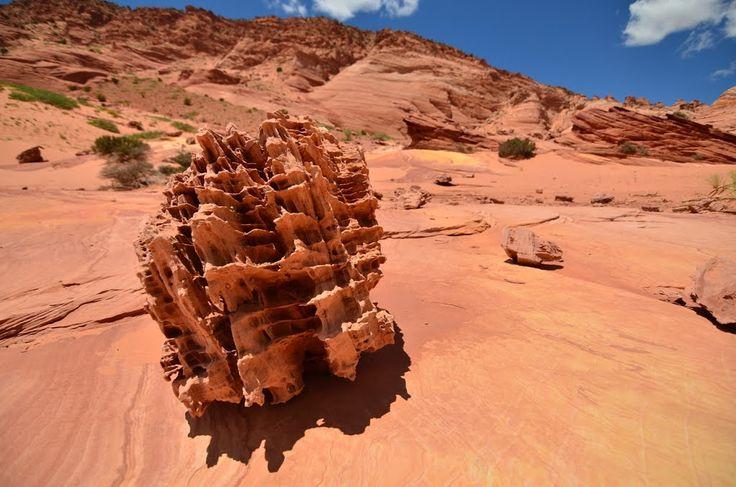 156 Best Vermilion Cliffs National Monument Arizona