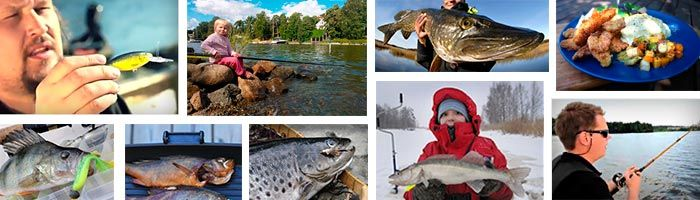 Kalastusvinkit löydät Honkkarin verkkokaupasta: http://kalastus.hongkong.fi/fi/info/kalastusvinkit