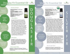 February Oil of the Month - Douglas Fir and Silver Fir - Plant Therapy Blog