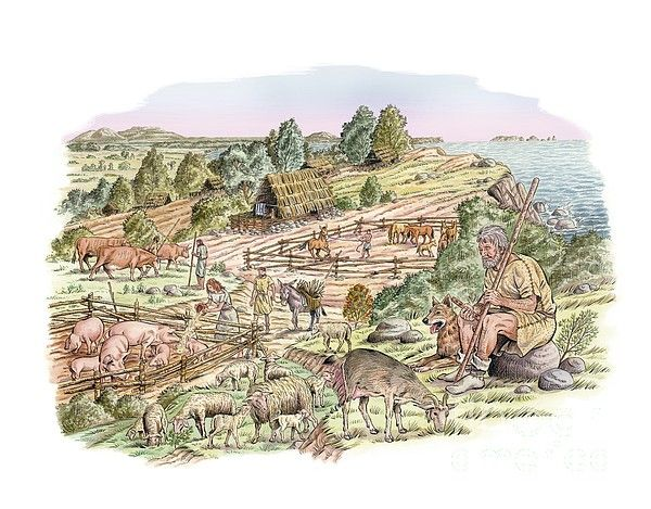 European Bronze Age livestock by Luis and Marta Montanya