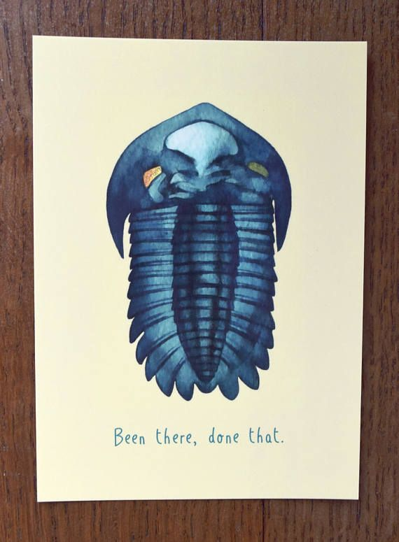 Been There Done That: Evolution Postcard  Watercolour of a