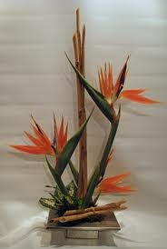 Bird of Paradise/Bamboo Arrangement