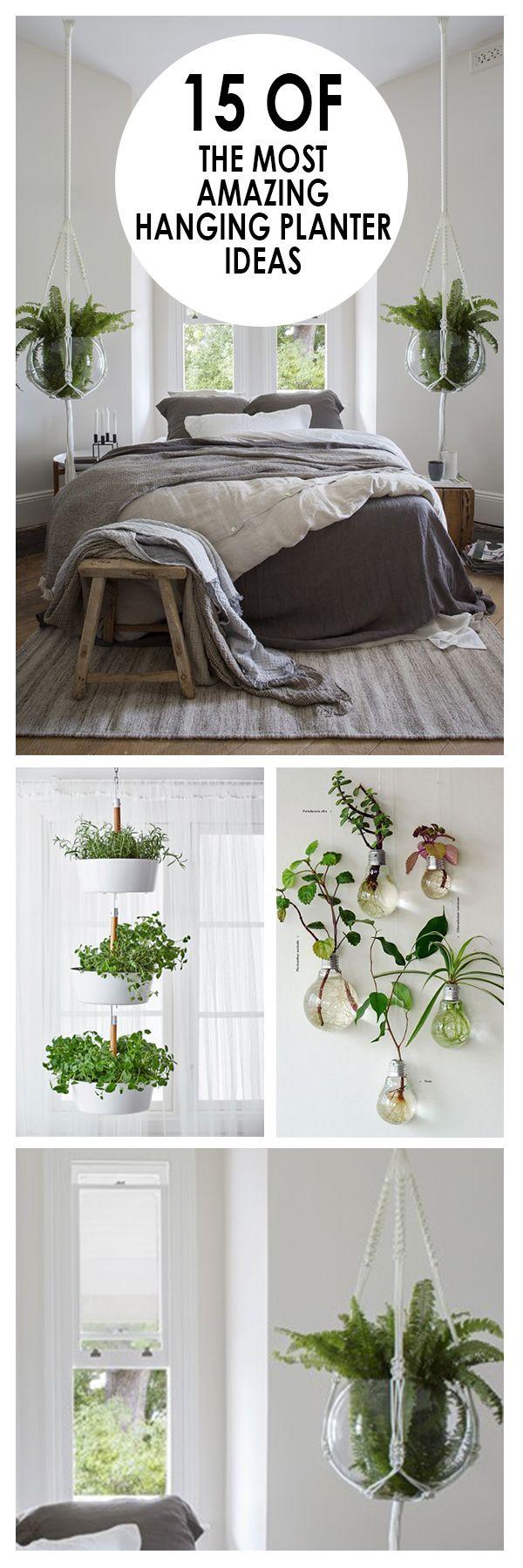 best 25+ hanging planters ideas on pinterest | indoor hanging