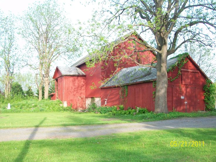 Our Beautiful old barn, Griffith road Phelps NY