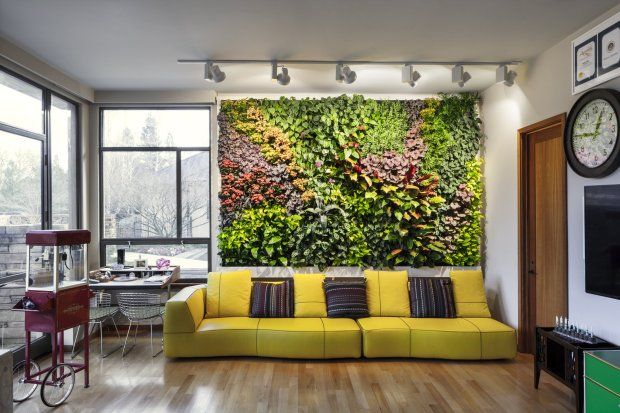 "San Jose's David Brenner a pioneer in ""living wall"" trend"