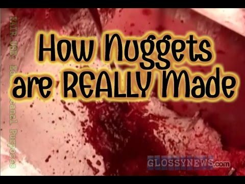 GN: How Chicken Nuggets are REALLY Made (Full Documentary)