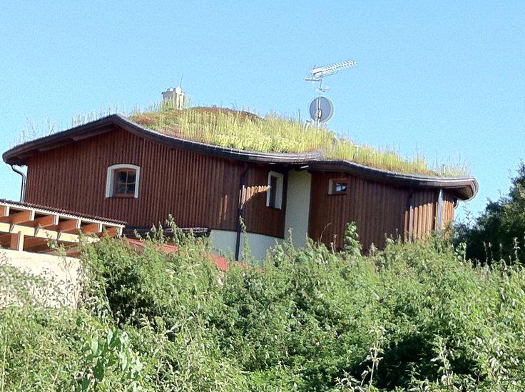 Zelená #strecha