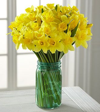 Striking Gold Daffodil Bouquet - 40 Stems - VASE INCLUDED
