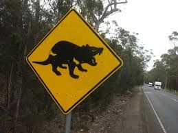 Image result for unique australian road signs