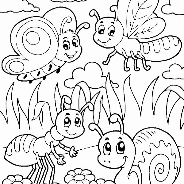 Bug Coloring Pages New Cute Bug Drawing At Getdrawings Bug Coloring Pages Insect Coloring Pages Butterfly Coloring Page