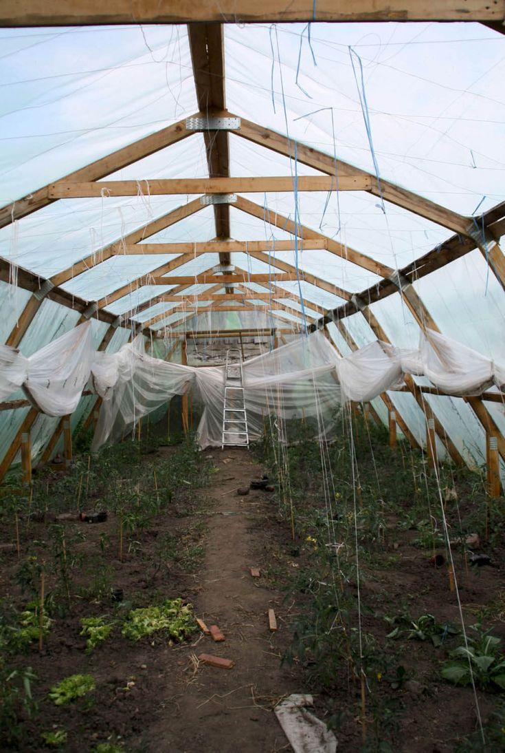 În solar La Borcan PlatFerma | La Borcan, Întreprinderea Agricolă care Livrează Hrănătate | http://platferma.ro