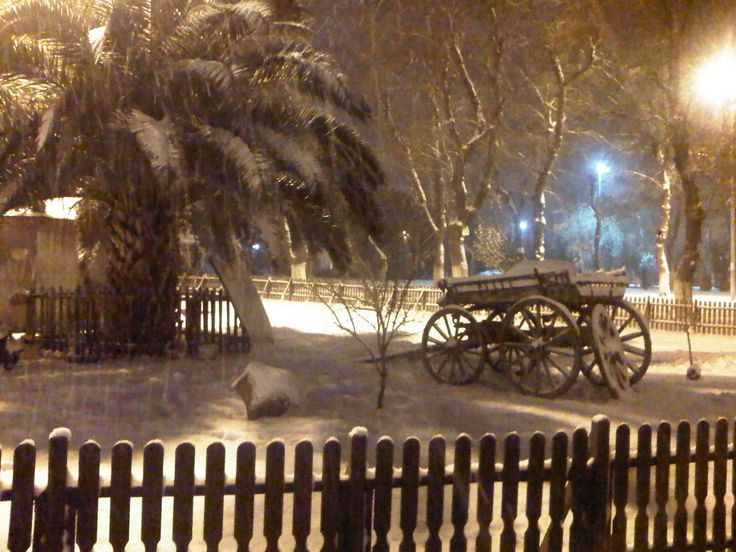 On a snowy night at Yesilkoy Rone Park