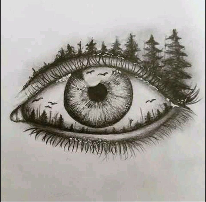 The Eye Looks At What The Heart Understands Eye Drawing Art Drawings Sketches Sketches