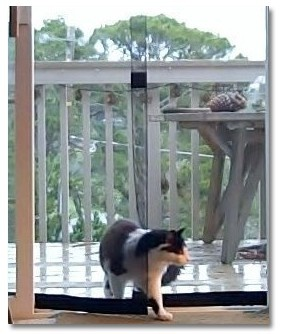 1000 Images About Bug Off Magnetic Screen Door On