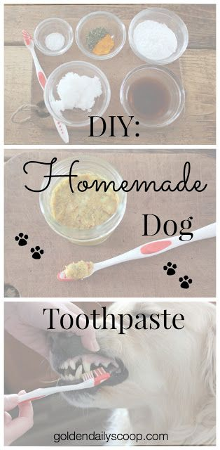 DIY: Homemade Dog Toothpaste #diy #dogtoothpaste #homemade