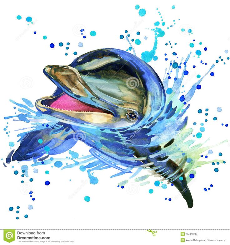 Dolphin Illustration With Splash Watercolor Textured Background ...