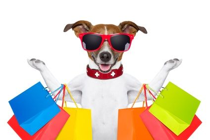 Servicios de Marketing a ganaderías, empresas de alimentación de origen animal, criadores de perros y gatos y tiendas para mascotas. Tfno 667 425 230