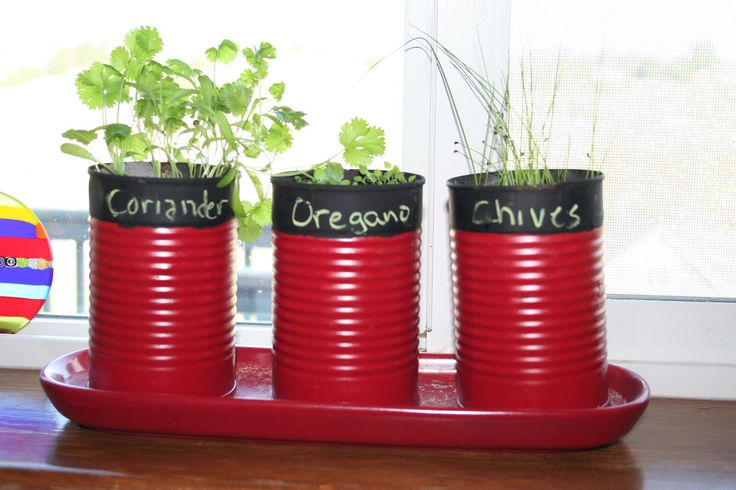 Herbs in a can pot