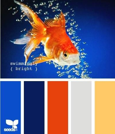 color palette for a Brogan's room and bathroom...orange and grey for the room with a splash of navy with bright blue and yellow in the bath...