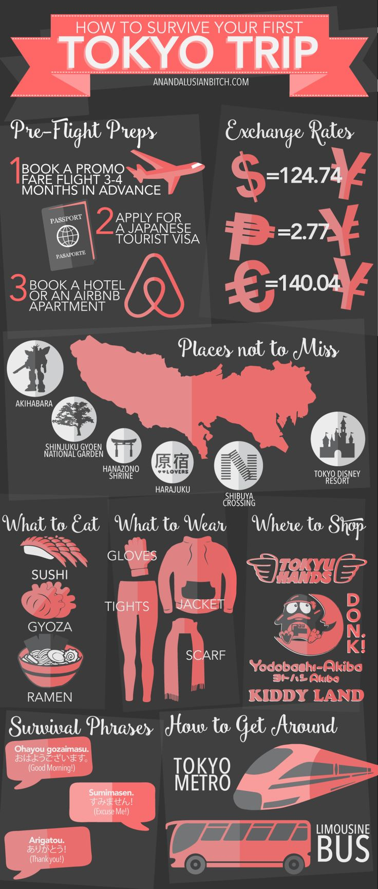 Travel Infographic How To Survive Your First