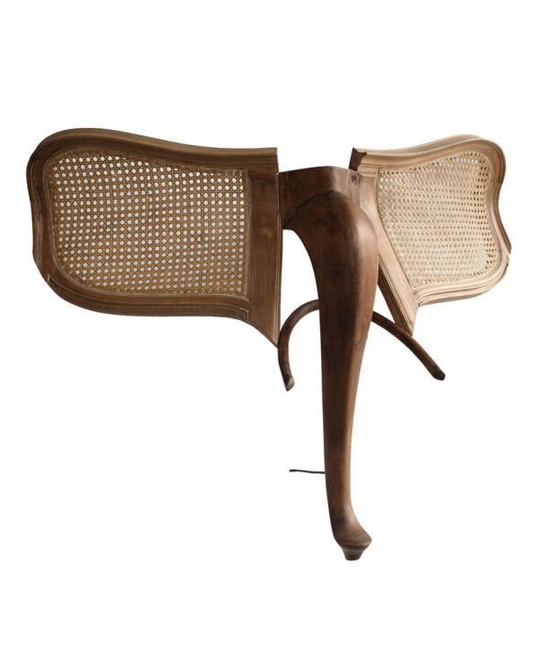 Furniture Animals - Neatorama