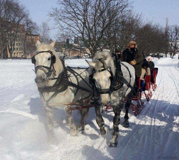 A sleigh ride is the perfect way to enjoy Quebec City during the holidays. The Best Cities to visit for Christmas-www.casualtravelist.com