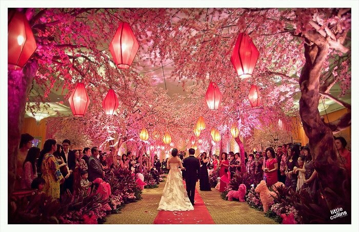 a surreal cherry blossom themed wedding that made my heart stop. By Little Collins Pictures @ https://www.facebook.com/littlecollins