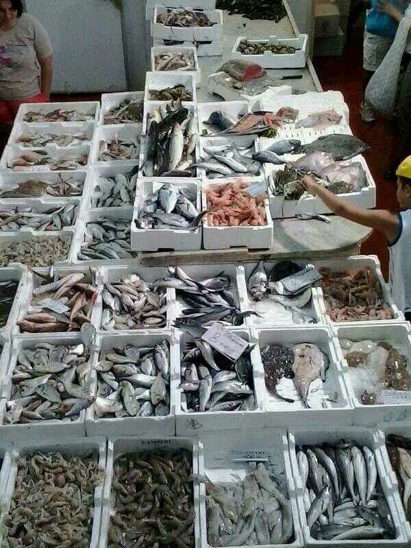 Il mercato del pesce fresco