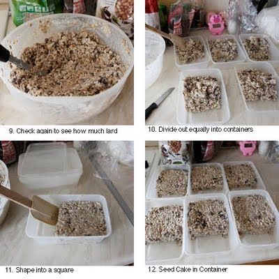 Make your own bird suet cakes:    Seed Cakes using shortening (or lard); peanuts, raisins and sunflower seeds; and take-away boxes or yogurt containers with string!