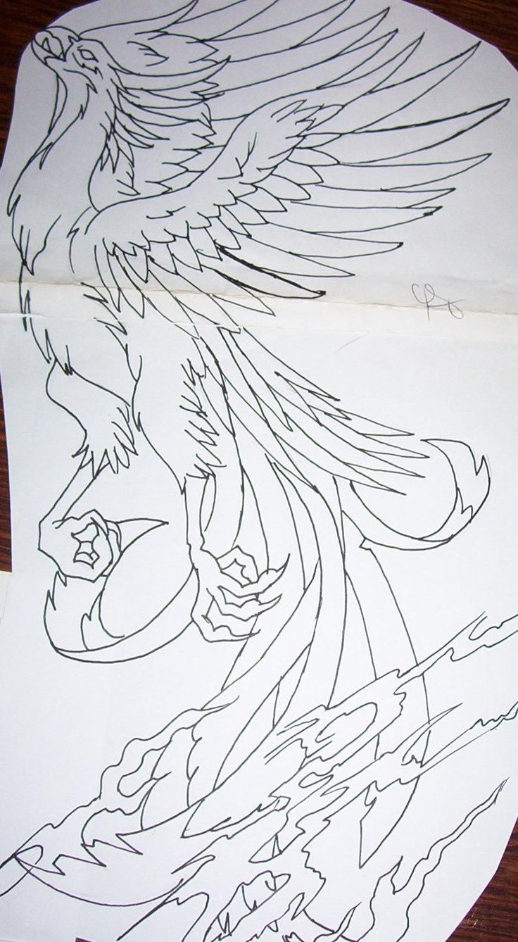 2017 01 phoenix design tattoo - Find This Pin And More On Tattoos I M Determined To Get Phoenix Design