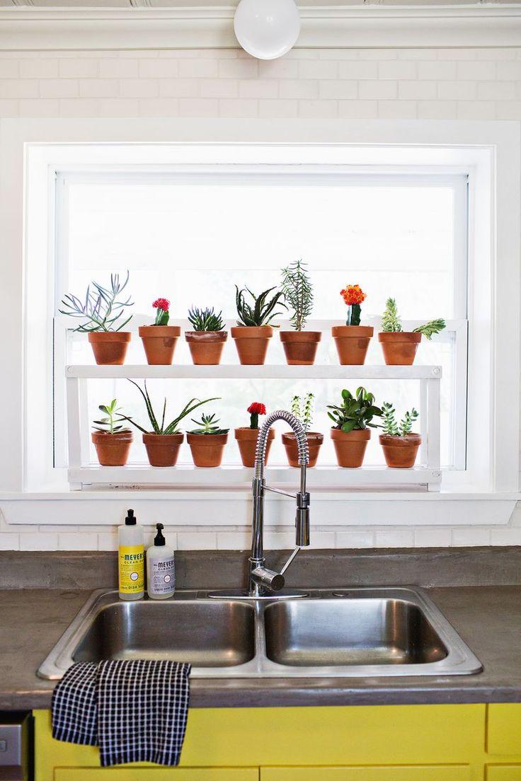 Over The Kitchen Sink Plant Shelf