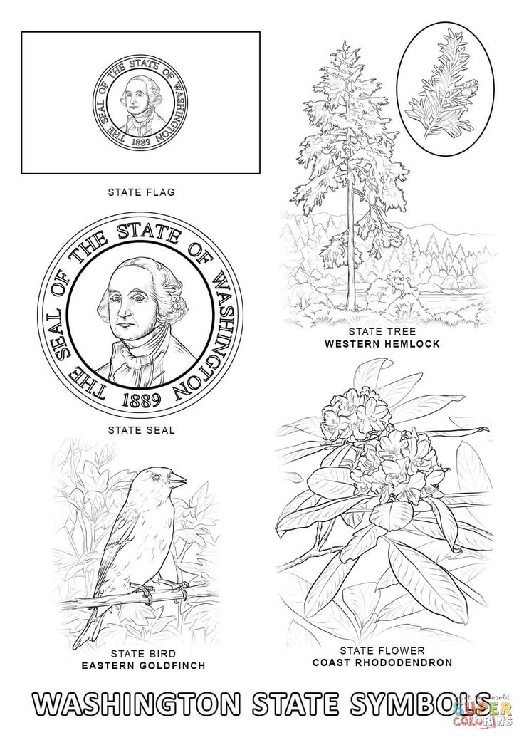18 best Free USA States Maps Coloring Pages images on