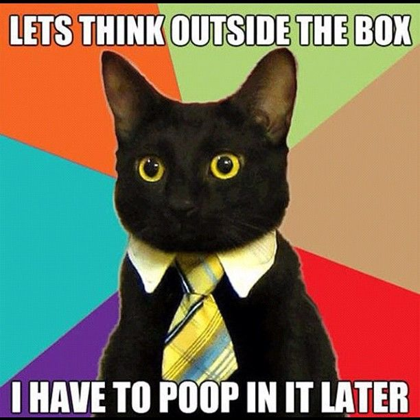 Lets think outside the box I have to poop in it later
