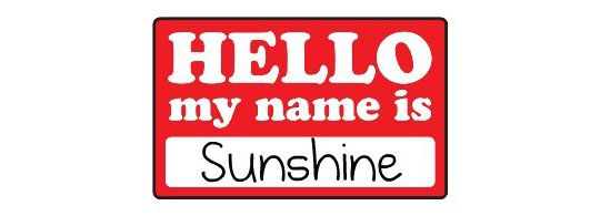 """Do you use camp names? I love camp names, but after a while they begin to repeat. How many """"Sunshines"""" can one camp have?"""