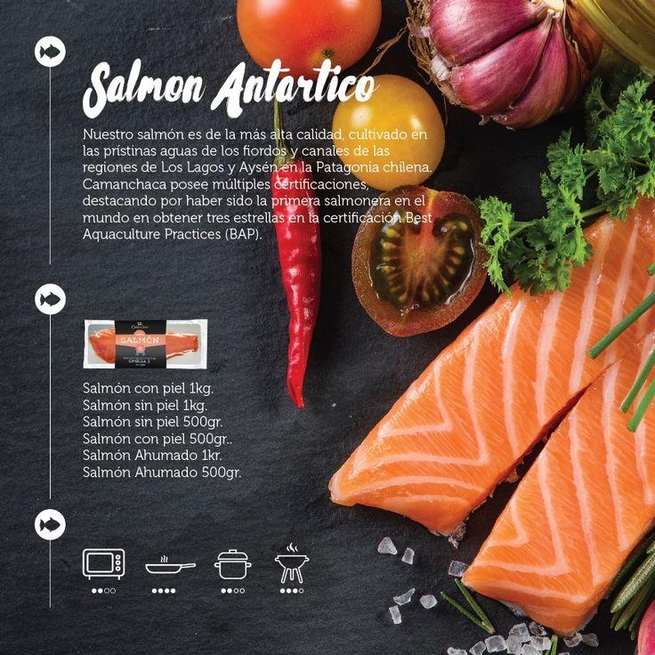Propuesta catálogo de productos / Camanchaca on Behance