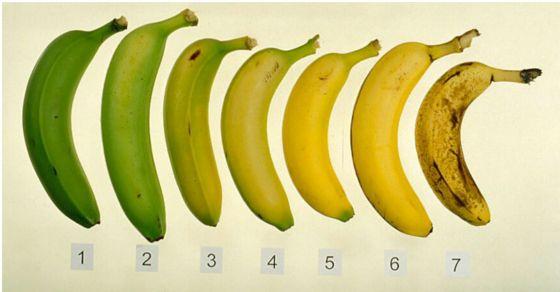 Dupa ce Citesti Asta, NU vei mai privi Bananele ca inainte   Secretele