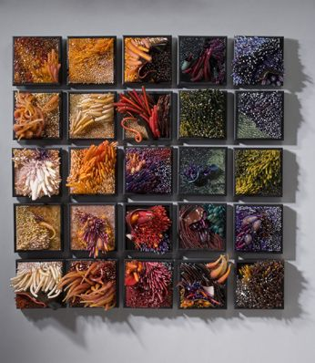 Shayna Leib, Glass Artist - Sculptural Glass Art. Love the textures and colours.